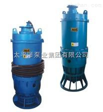 BQW矿用型隔爆排污泵