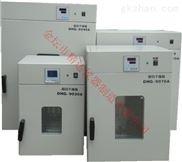 电热鼓风干燥箱DHG-9070A