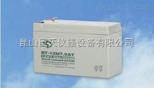 嘉定12伏7毫安赛特电池