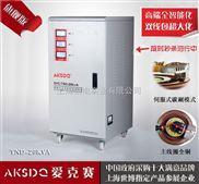 供应爱克赛小型工厂用单相交流稳压器TND-20KVA