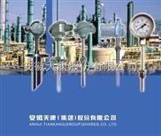 WZP-240G热电阻