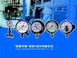 YN系列、YN-B系列耐震压力表-天康品牌