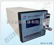 在线式便携式氧分析仪