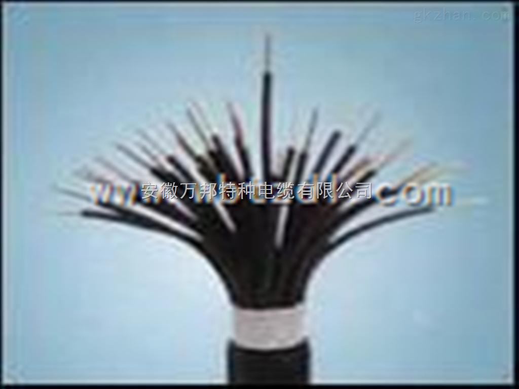 特种阻燃电子计算机电缆