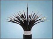 ZR-DJYPV-特种阻燃电子计算机电缆