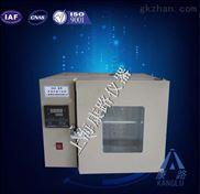 全自动干燥箱/上海厂家直销/优质实验室烘箱