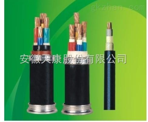 天康NH-BPVVPP2耐火双层屏蔽变频电缆