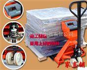DCS-XC-F搬运电子叉车磅秤