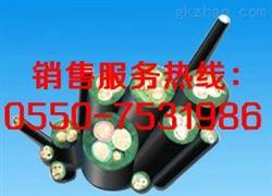 YZ橡套电缆,YZW橡套电缆