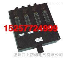 BXM(D)8050防爆防腐照明(动力)配电箱动力照明配电箱