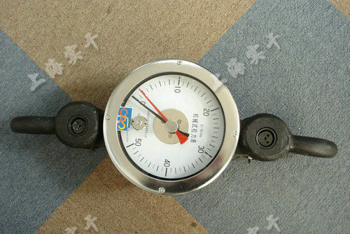 SGNK指针测力计图片
