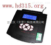 XN12/DWS-803实验室钠度计
