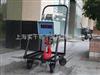 直式电子吊秤,20吨直式吊秤,带直式吊磅